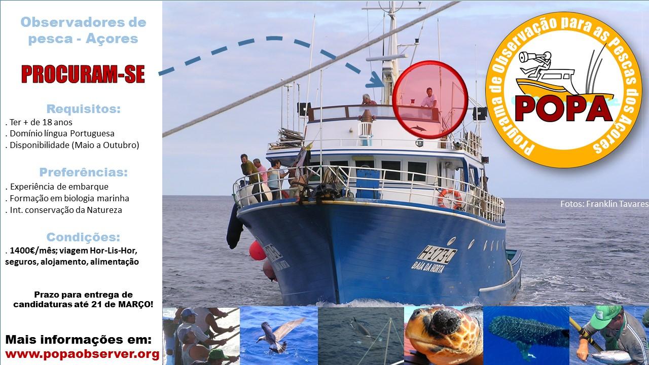 Procuram-se observadores de pesca para a equipa 2020 do POPA